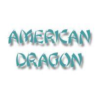 Logo American Dragon ith qi instituto tecnicas holisticas osteopatia fisioterapia psicologia majadahonda