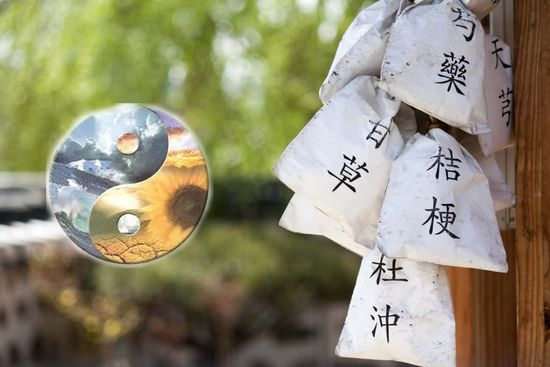Curso de Medicina Tradicional China y Holística I. Madrid 2018 2019