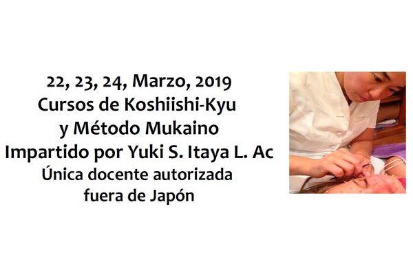 Cursos de Koshiishi-Kyu y Método Mukaino. Madrid 2019