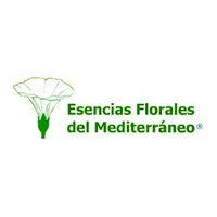 Logo Floralba ith qi instituto tecnicas holisticas osteopatia fisioterapia psicologia majadahonda